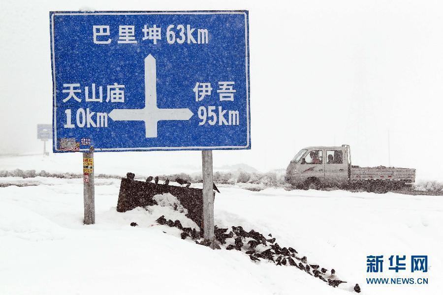 /新疆哈密地区降大雪